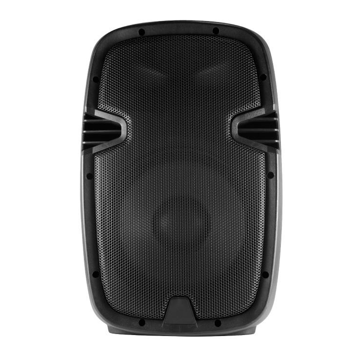 Pasivna-zvucna-kutija-220W-PAX25PRO